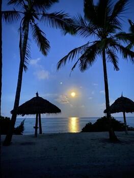 Blue Moon Resort