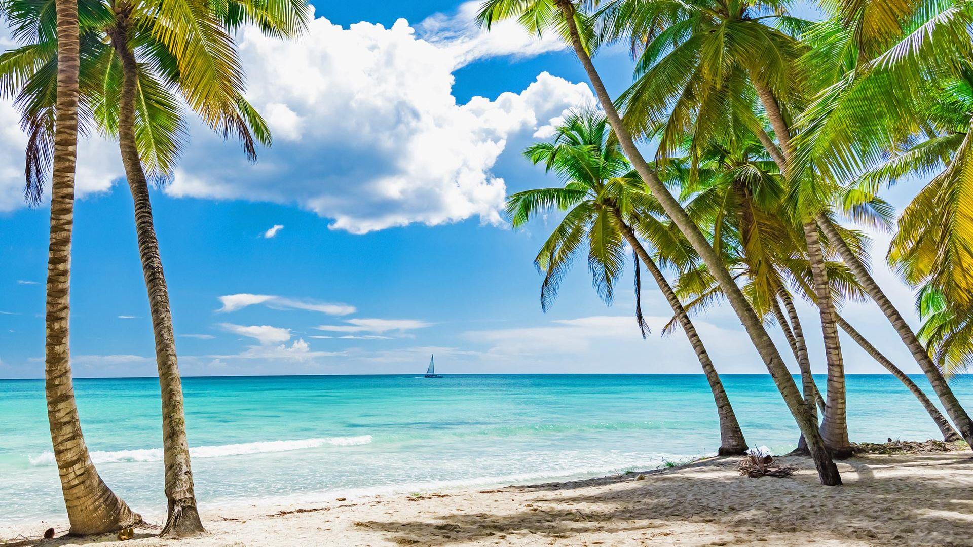 Sejur plaja Punta Cana, Republica Dominicana, 9 zile - 20 August 2021