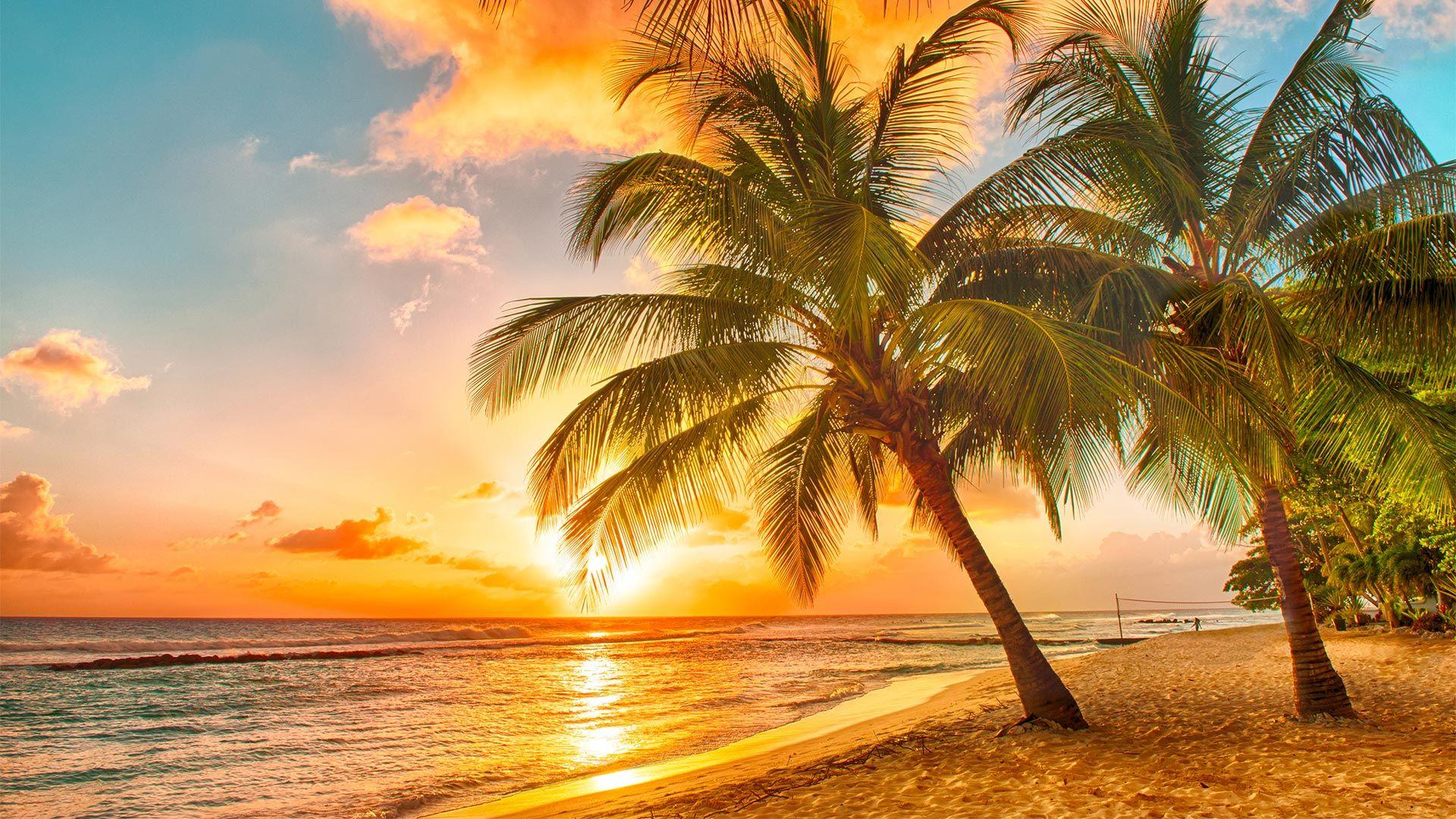 Sejur plaja Barbados, 11 zile
