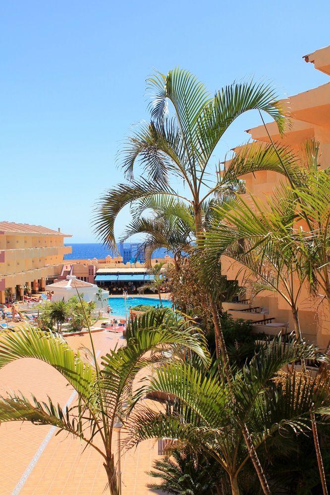 Marino Tenerife