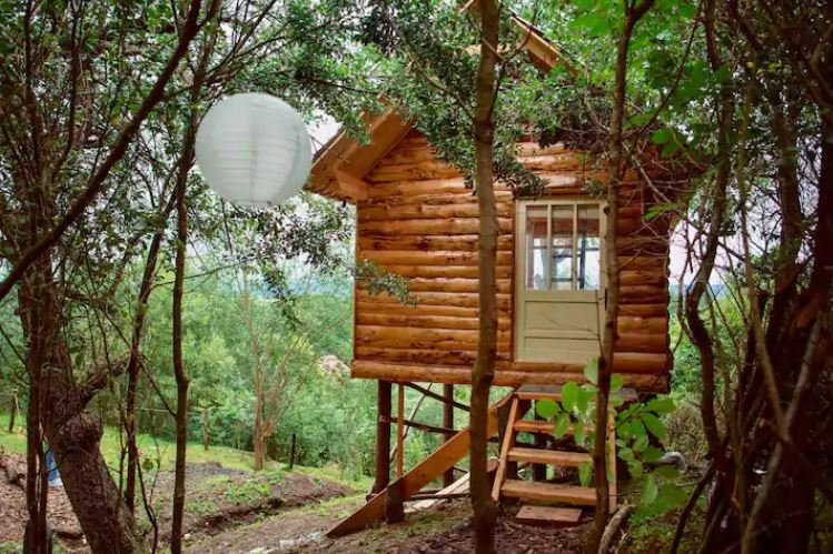 Cabana Transylvania Tree House