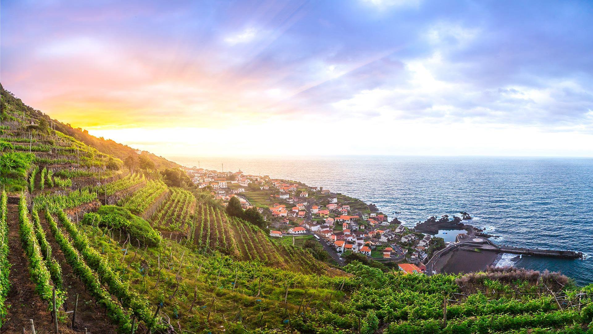 Sejur plaja Savoy Signature Madeira, 8 zile - 4 septembrie 2021