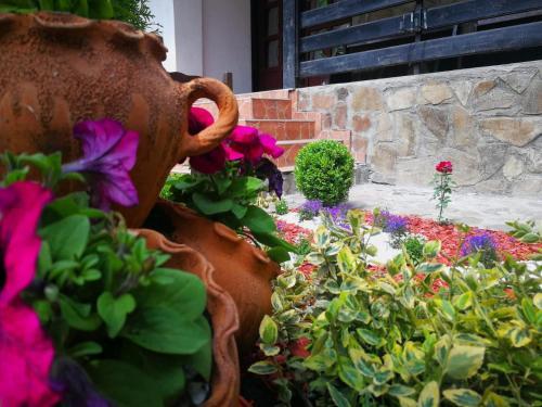 Casa Cu Flori