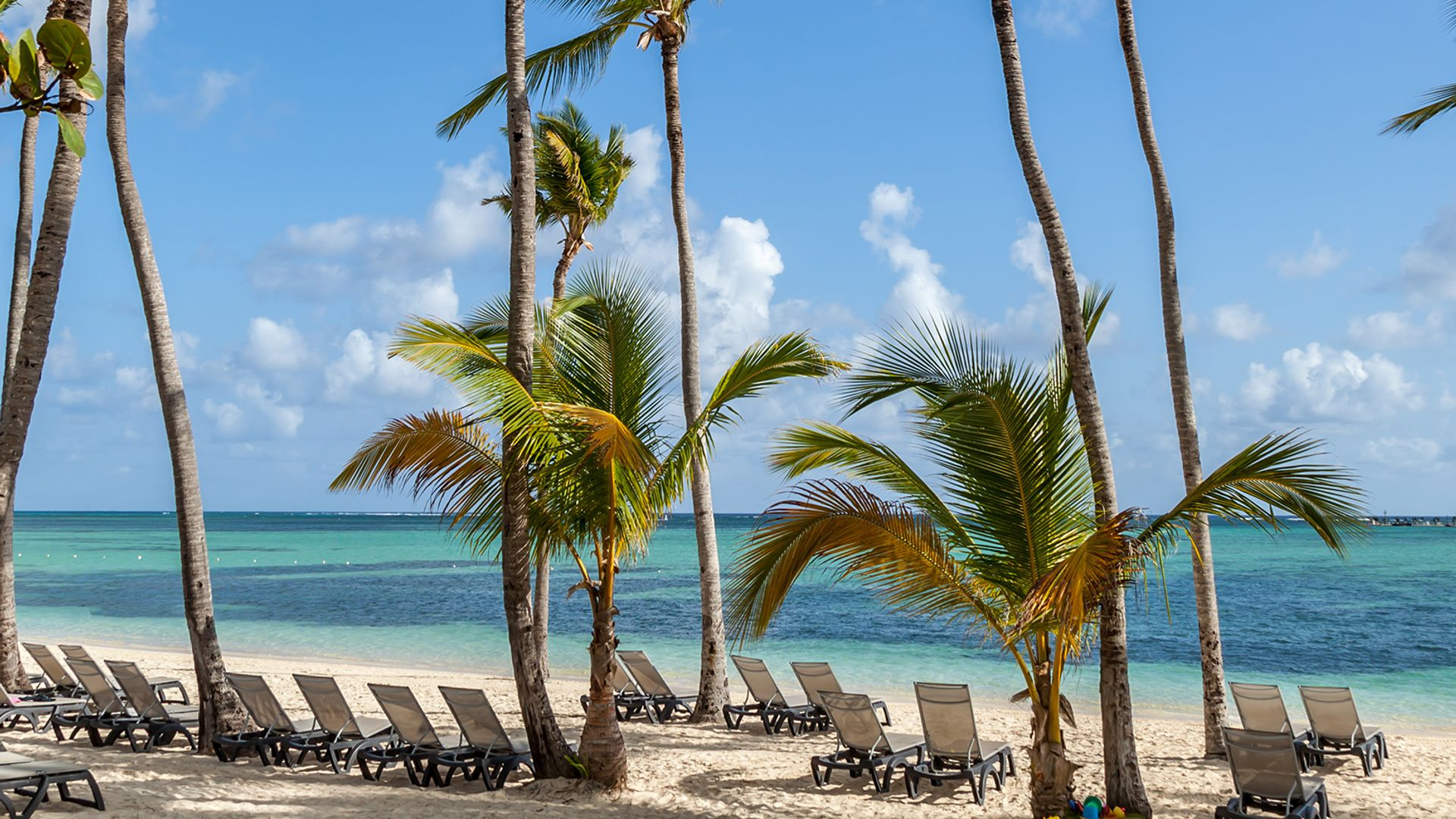 Revelion 2022 - Sejur plaja Punta Cana, Republica Dominicana, 14 zile