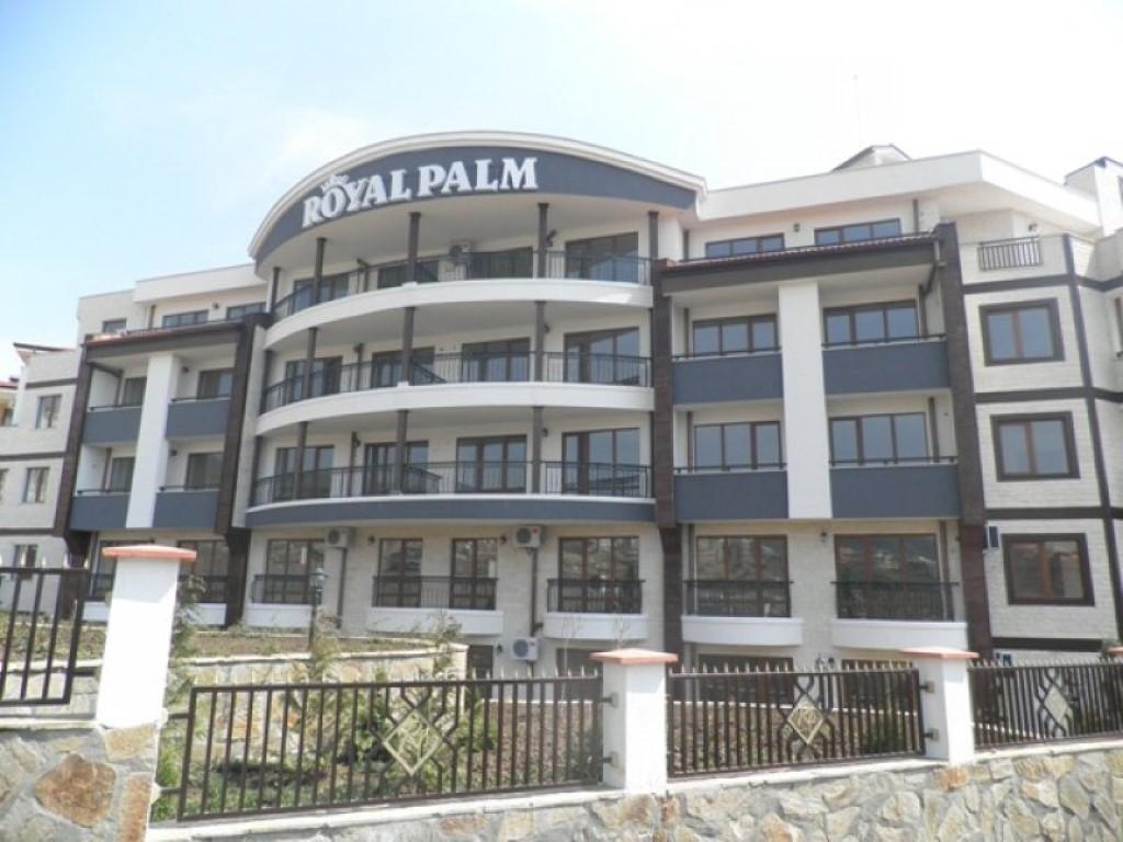 Royal Palm AH