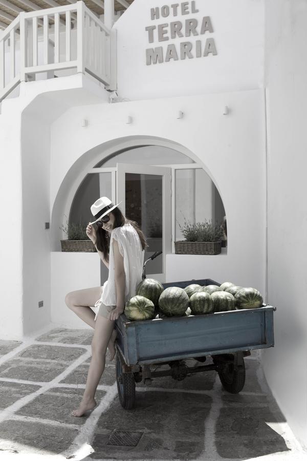 Terra Maria Boutique Hotel Mykonos