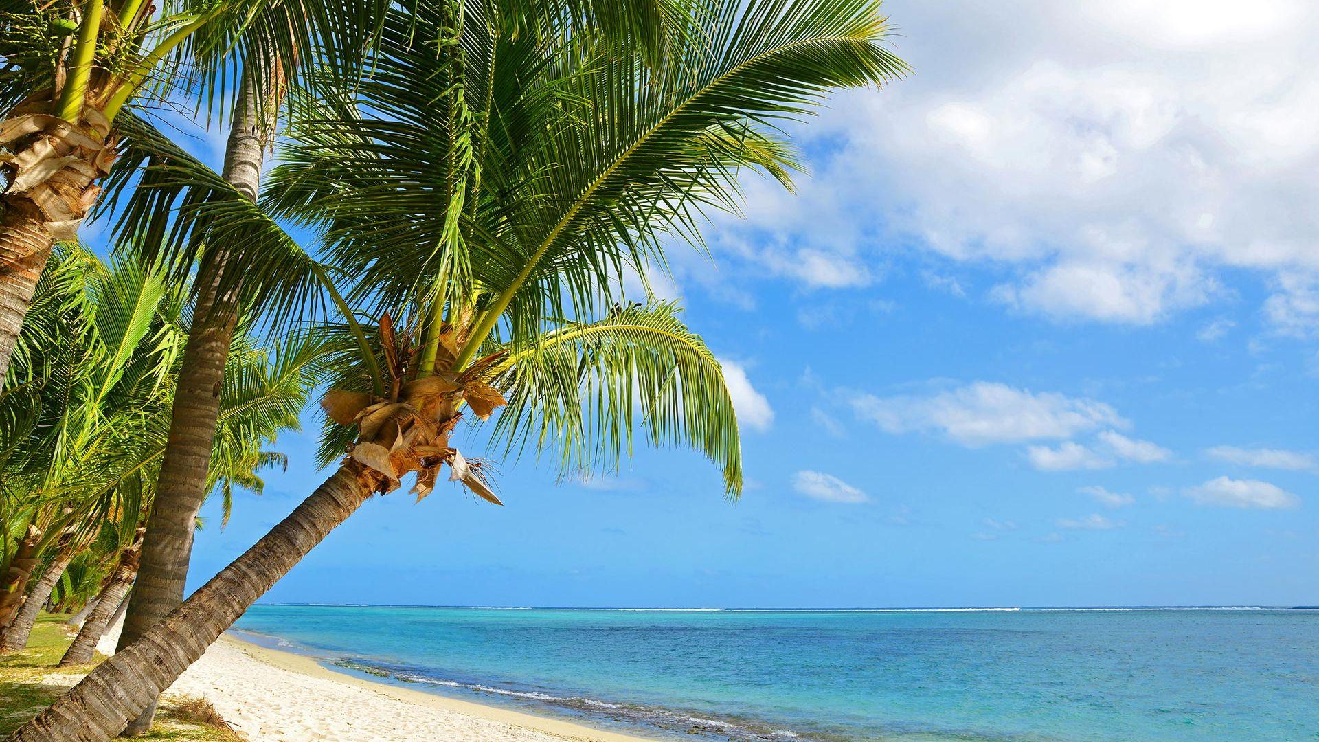 Sejur plaja Mauritius, 10 zile - 26 ianuarie 2022