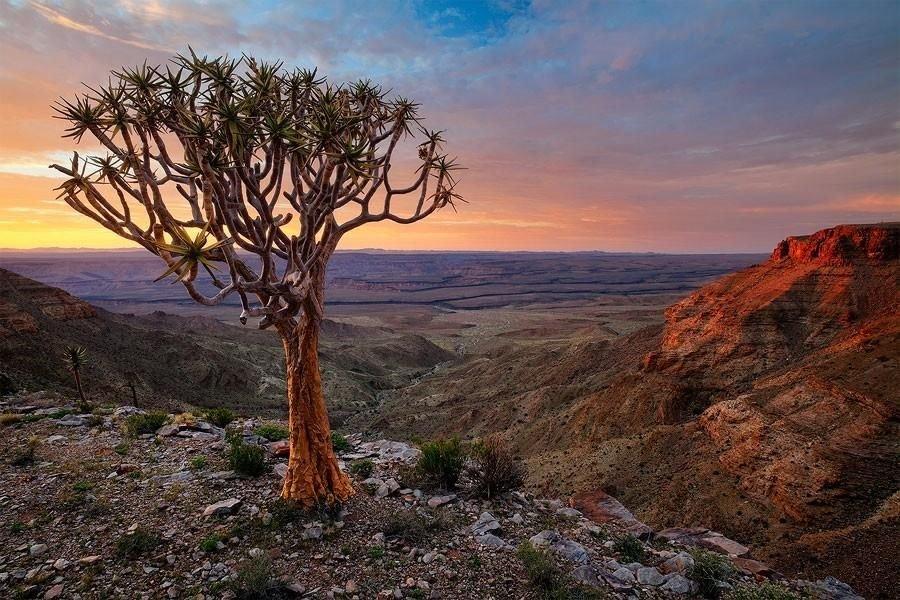 NAMIBIA 2020 - O experienta africana