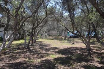 Camping Chania