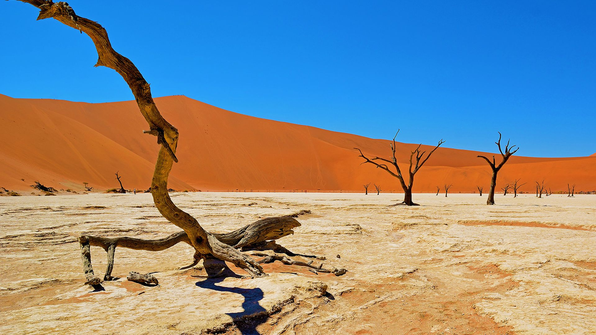 Paste 2022 - Circuit de grup - Experience Namibia, 14 zile - cu Yulicary Sarracent