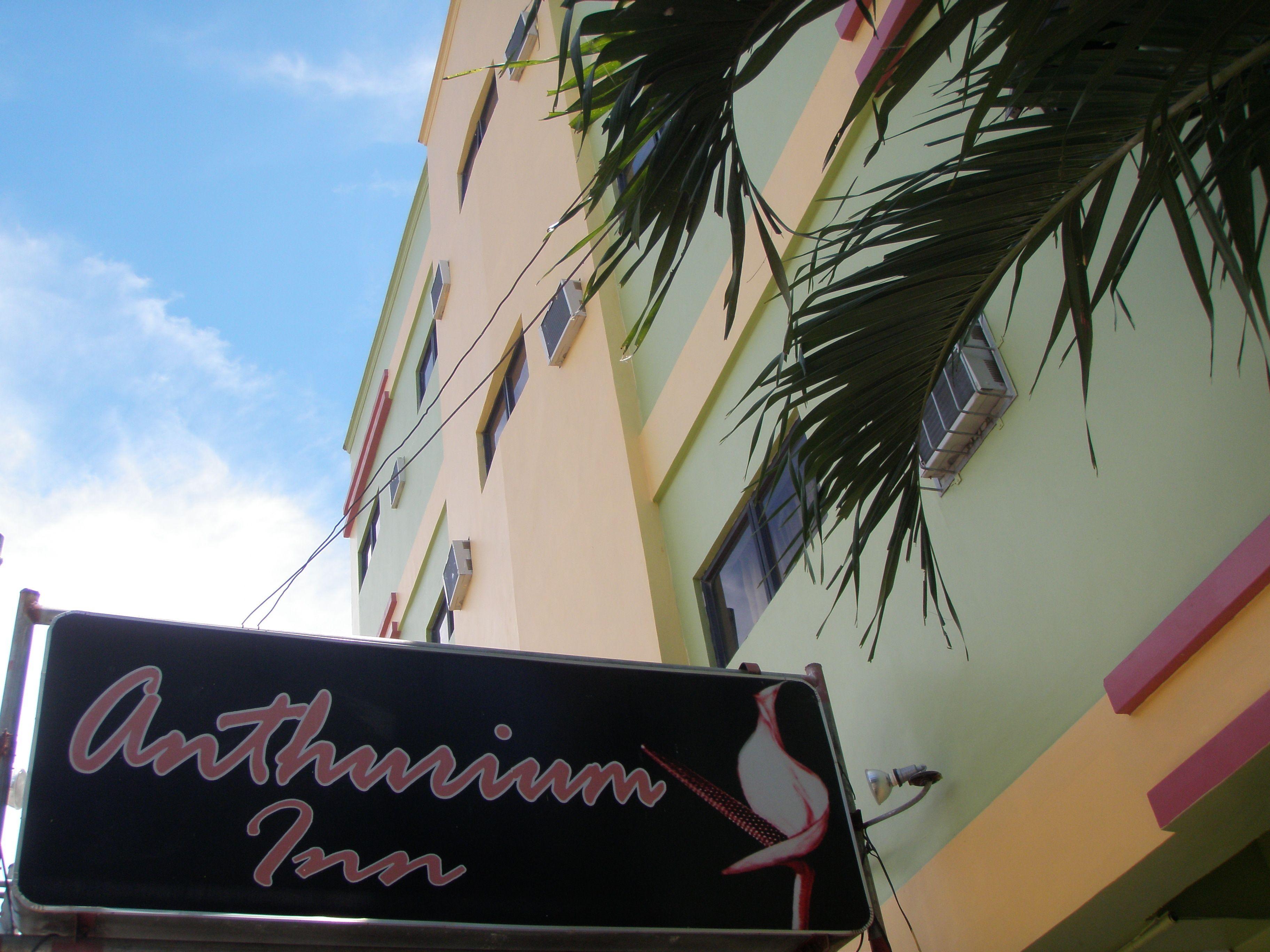 Anthurium Inn