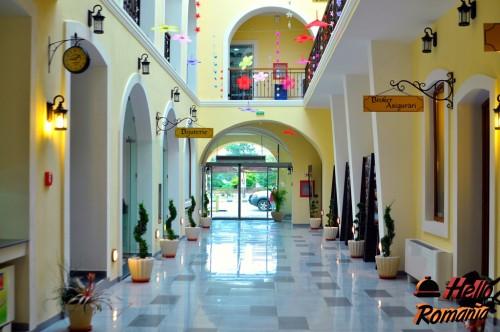 Hotel Leul De Aur Sebes