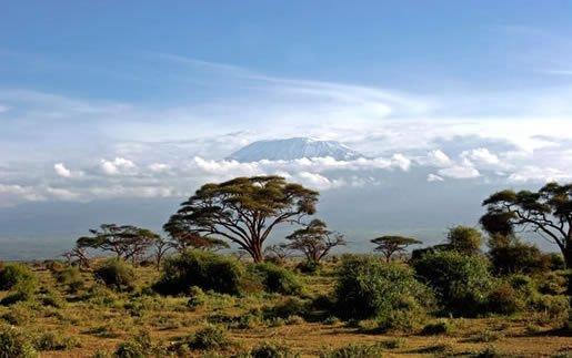 Safari Tsavo West 2 nopti + Plaja 5 nopti