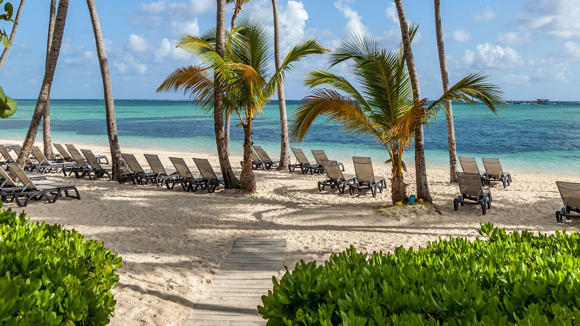 Sejur charter Grand Bavaro Princess Punta Cana, 9 zile - octombrie 2021