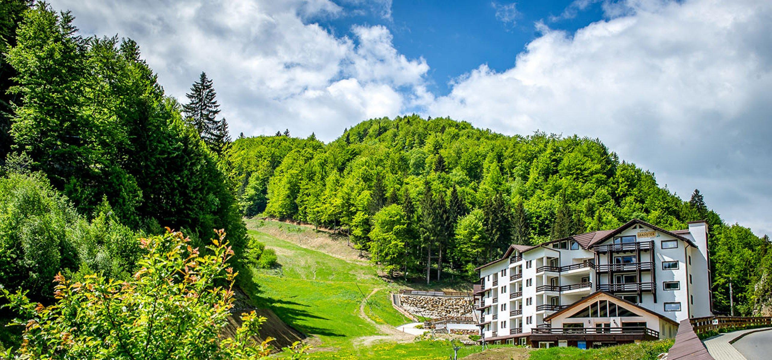 Resort Cheile Gradistei Moieciu (GRADISTEA/CHEIA/ARON/ALEX/VILA DE LEMN)