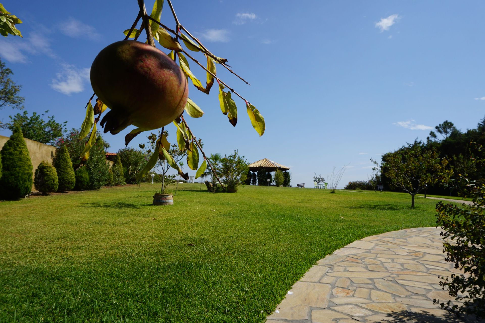 Villa Orama Chalkidiki