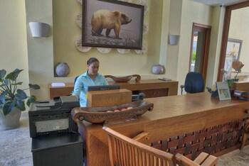 Xeliter Golden Bear Lodge