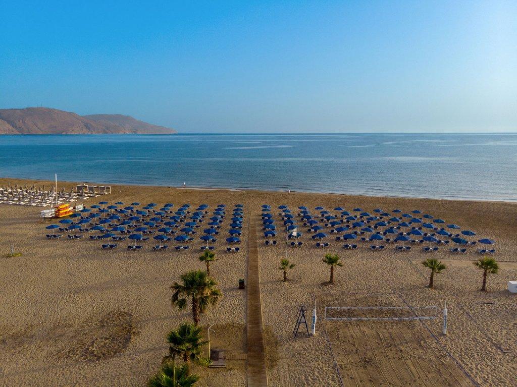 Delfina Beach (C)
