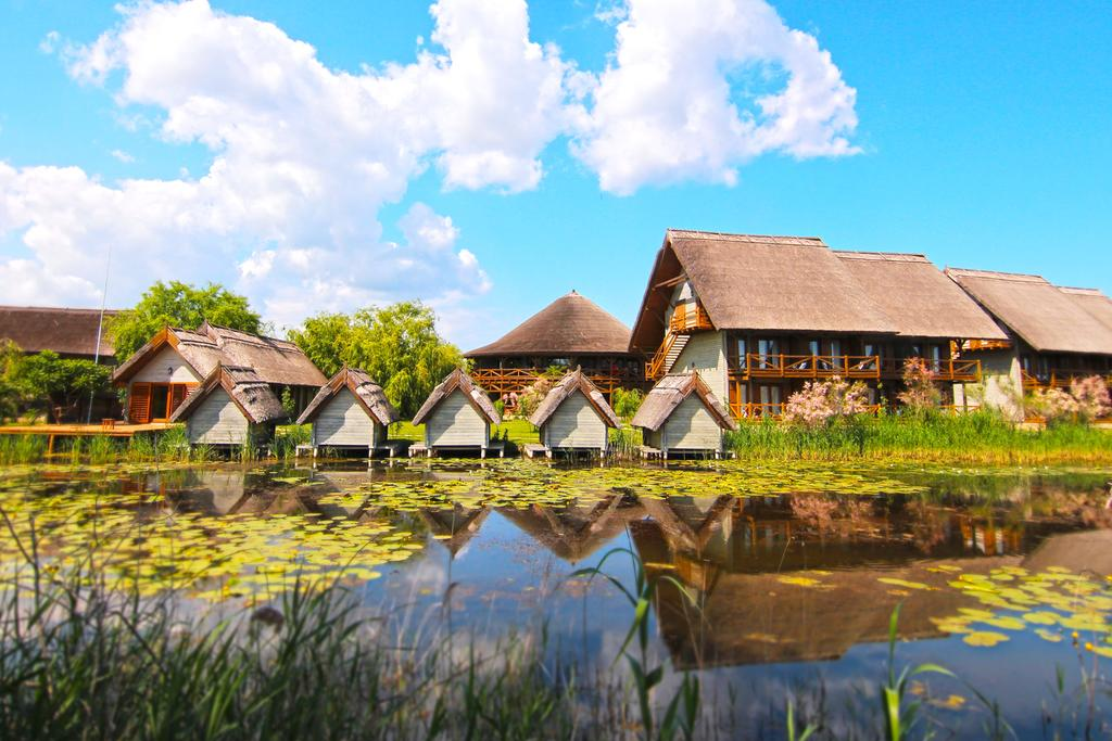 Green Village Resort - Oferta Craciun - Inscrieri Timpurii 01.11.2021