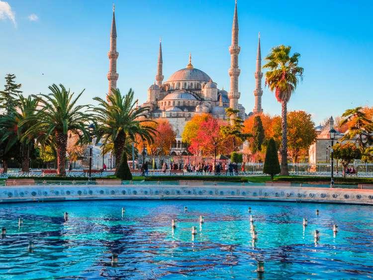 Paste in Bodrum & Istanbul