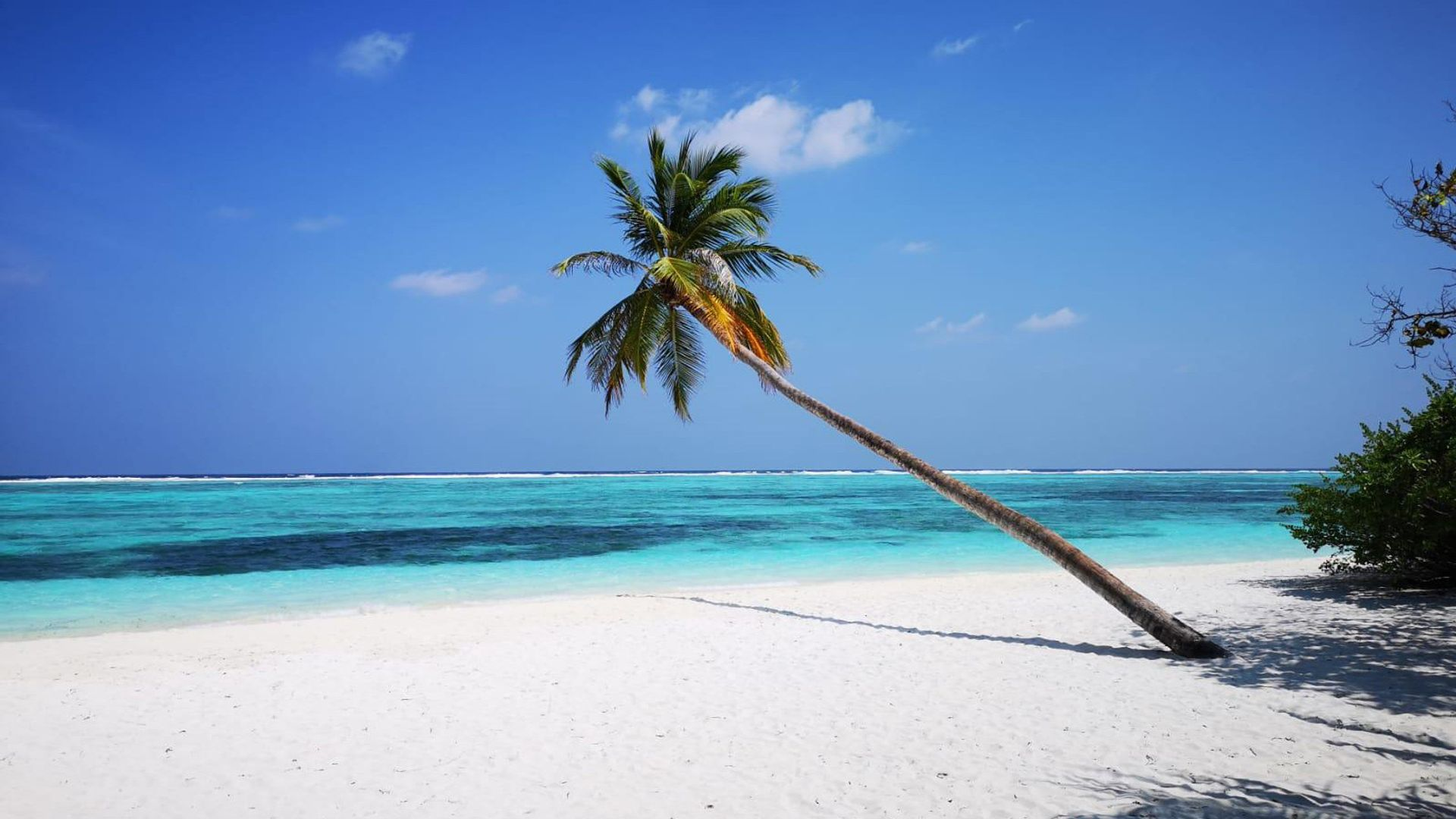Sejur Dubai & plaja Maldive, 11 zile