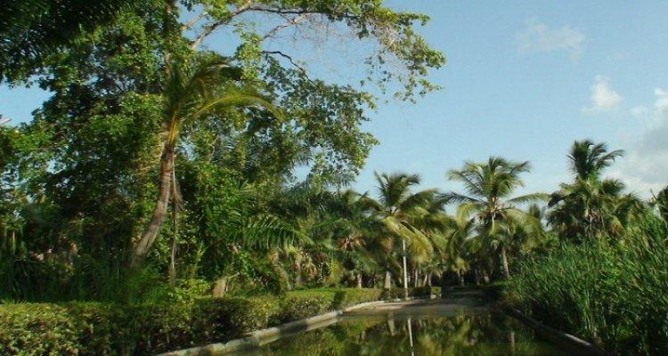 Riu Naiboa All Inclusive