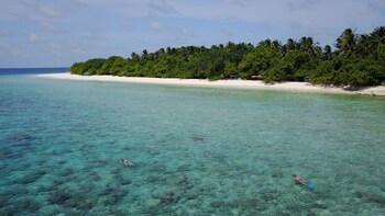 Beach Veli