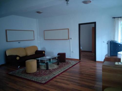 Olanesti Apartament