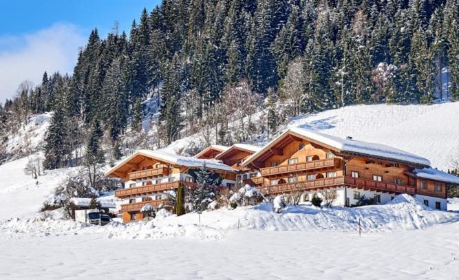 Aparthotel Alpin Apart