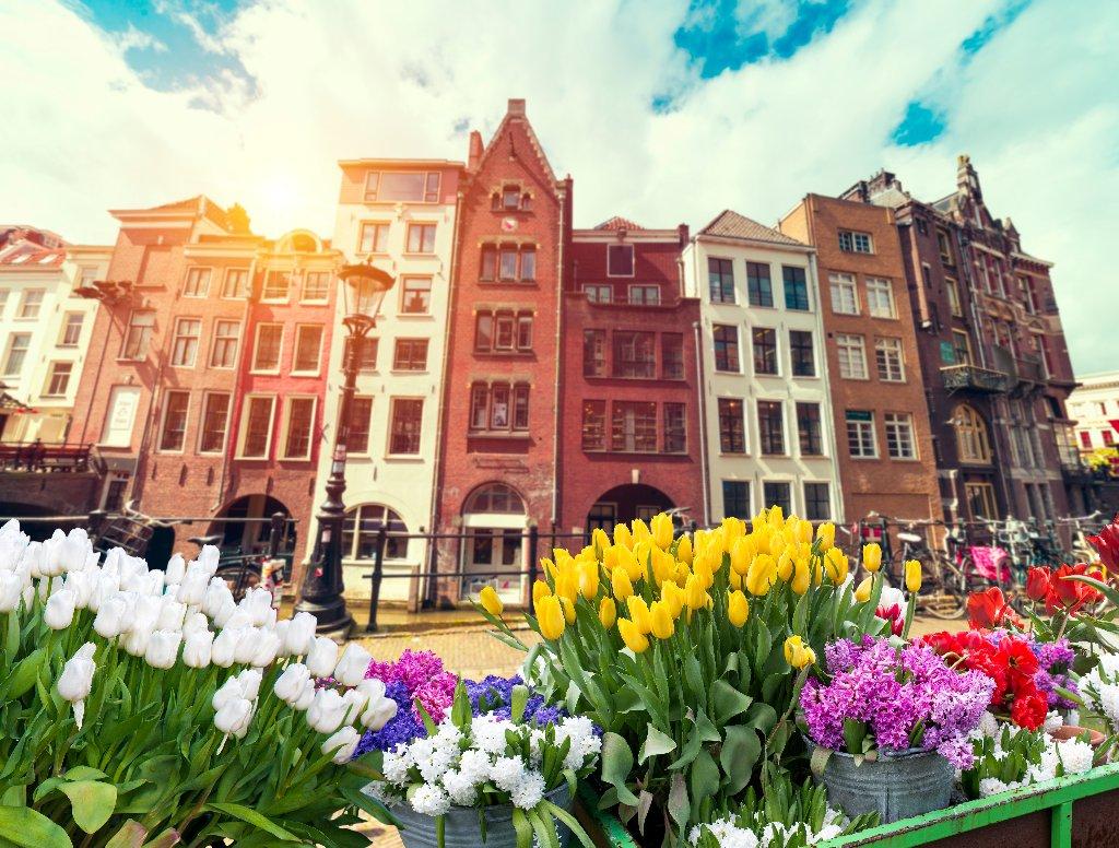 AMSTERDAM 2021 - Parada florilor