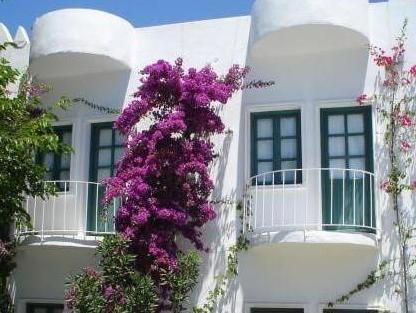 Flora Safir Hotel