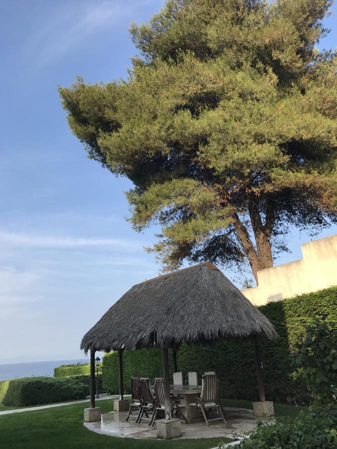 Luxury Villas Chalkidiki