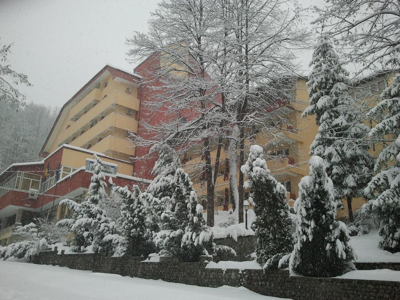 Paste - Hotel Livadia