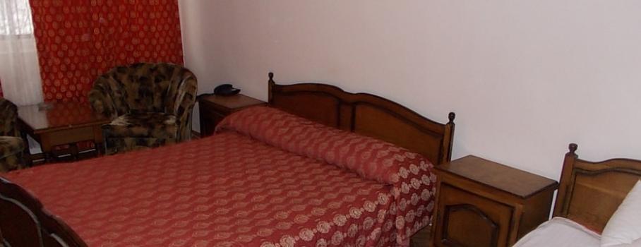 Minivacanta la Moneasa - Hotel Parc