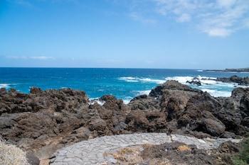 Coral Los Silos
