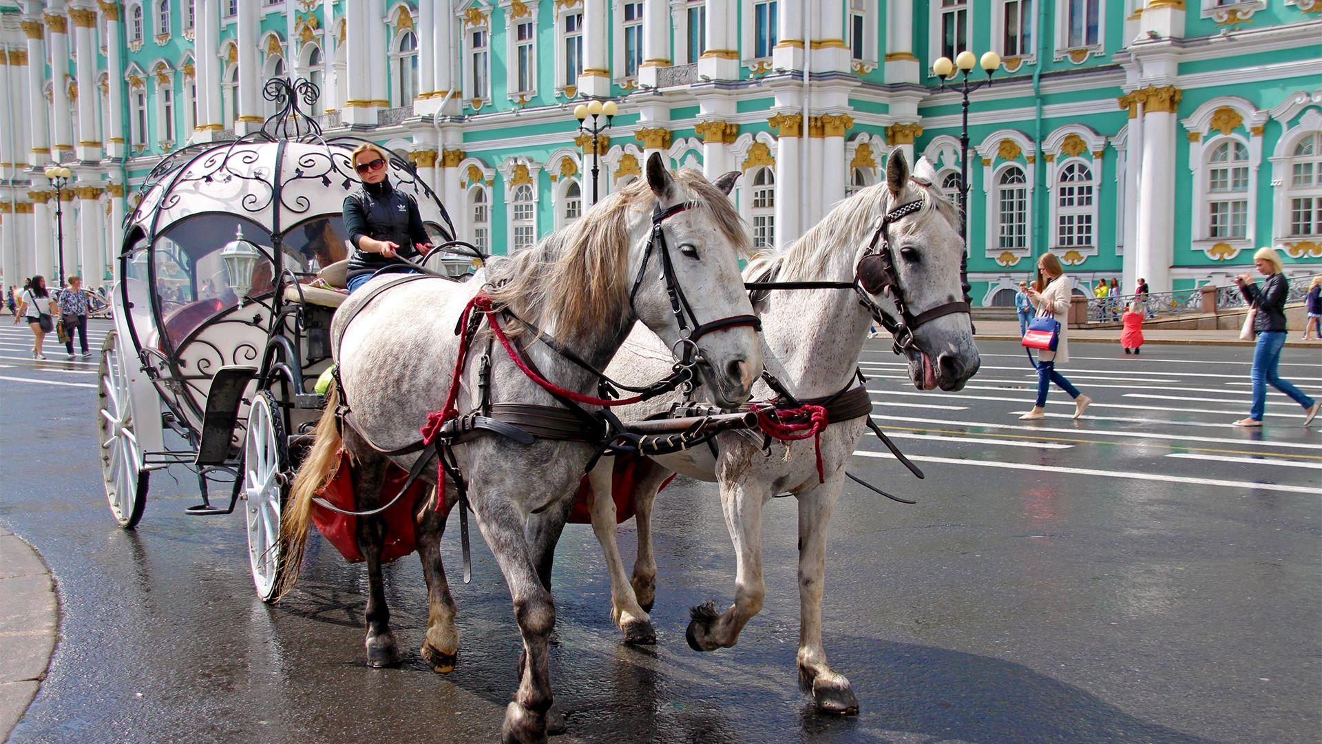 Share a Trip - Circuit Rusia, 7 zile, cu ghid vorbitor de limba romana