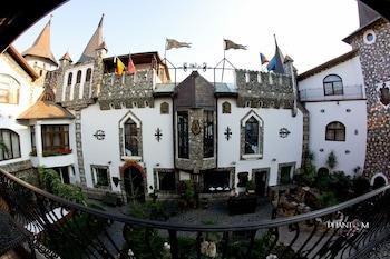 Hunter Prince Castle And Dracula