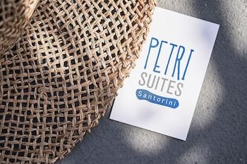Petri Suites