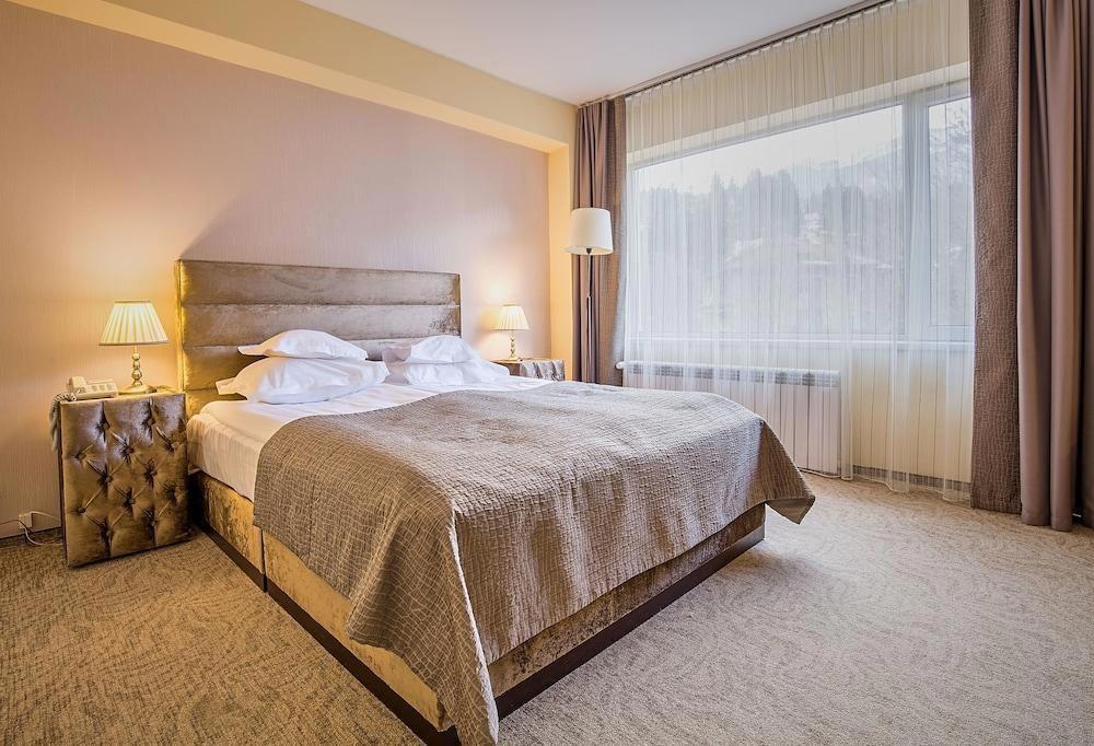 Hotel Rina Sinaia