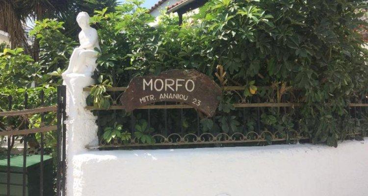 Pettite Morfo