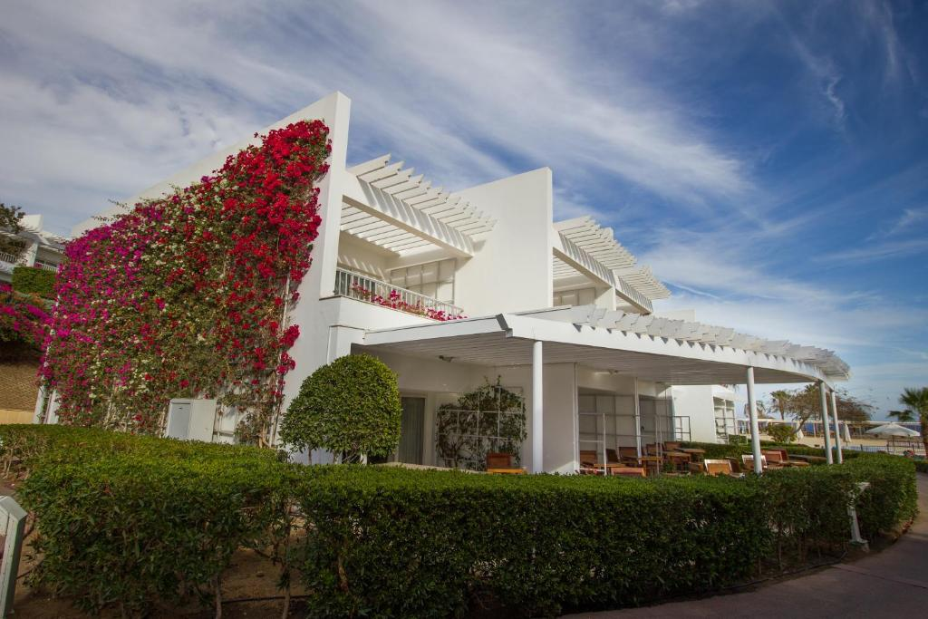 Royal Monte Carlo (Adults Only 16+)