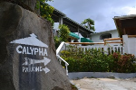 Calypha Guest House