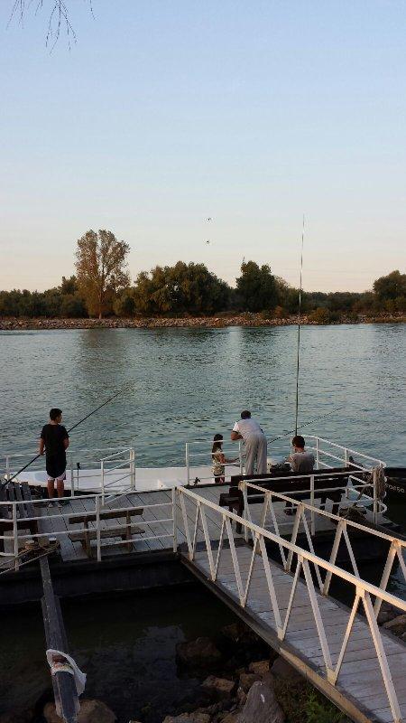 Pensiunea Pescarul Vanator