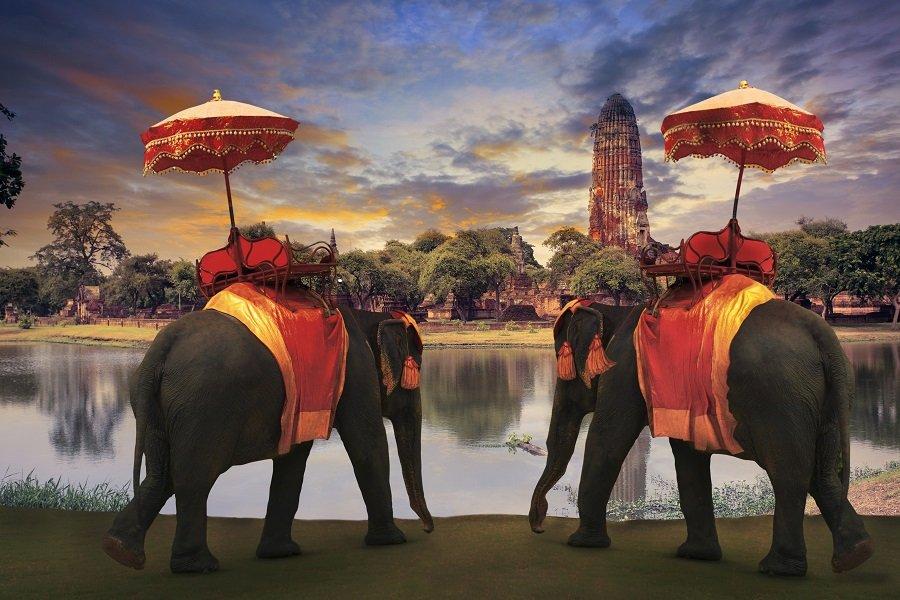 THAILANDA 2021 - toamna