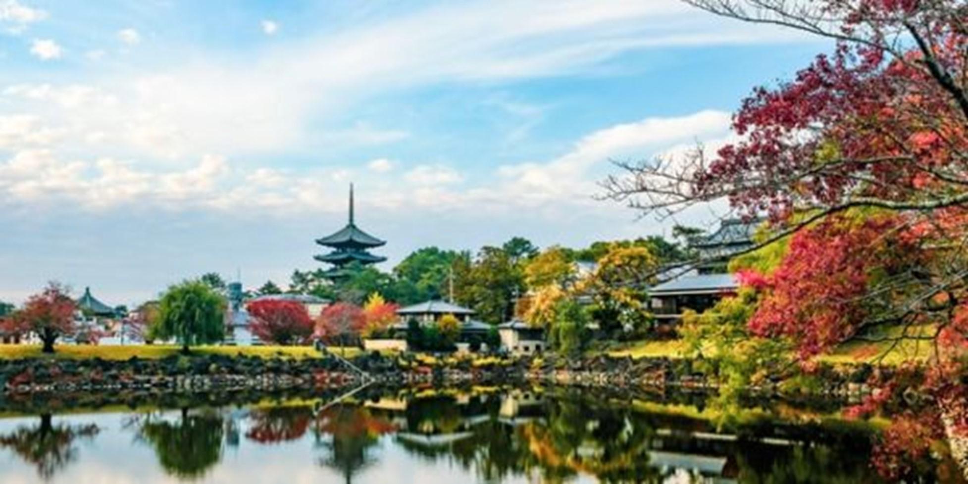 JAPONIA IN ARMONII DE TOAMNA 2021 - TRADITIE NEATINSA SI MODERN LA INALTIME