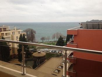 Vigo Panorama