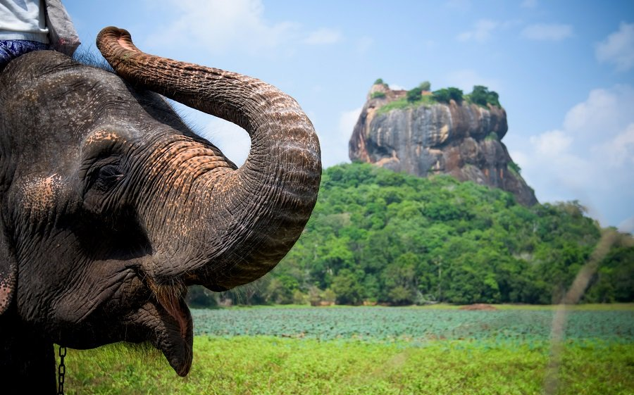 Sri Lanka 29.11.2021 - O destinatie tropicala fascinanta