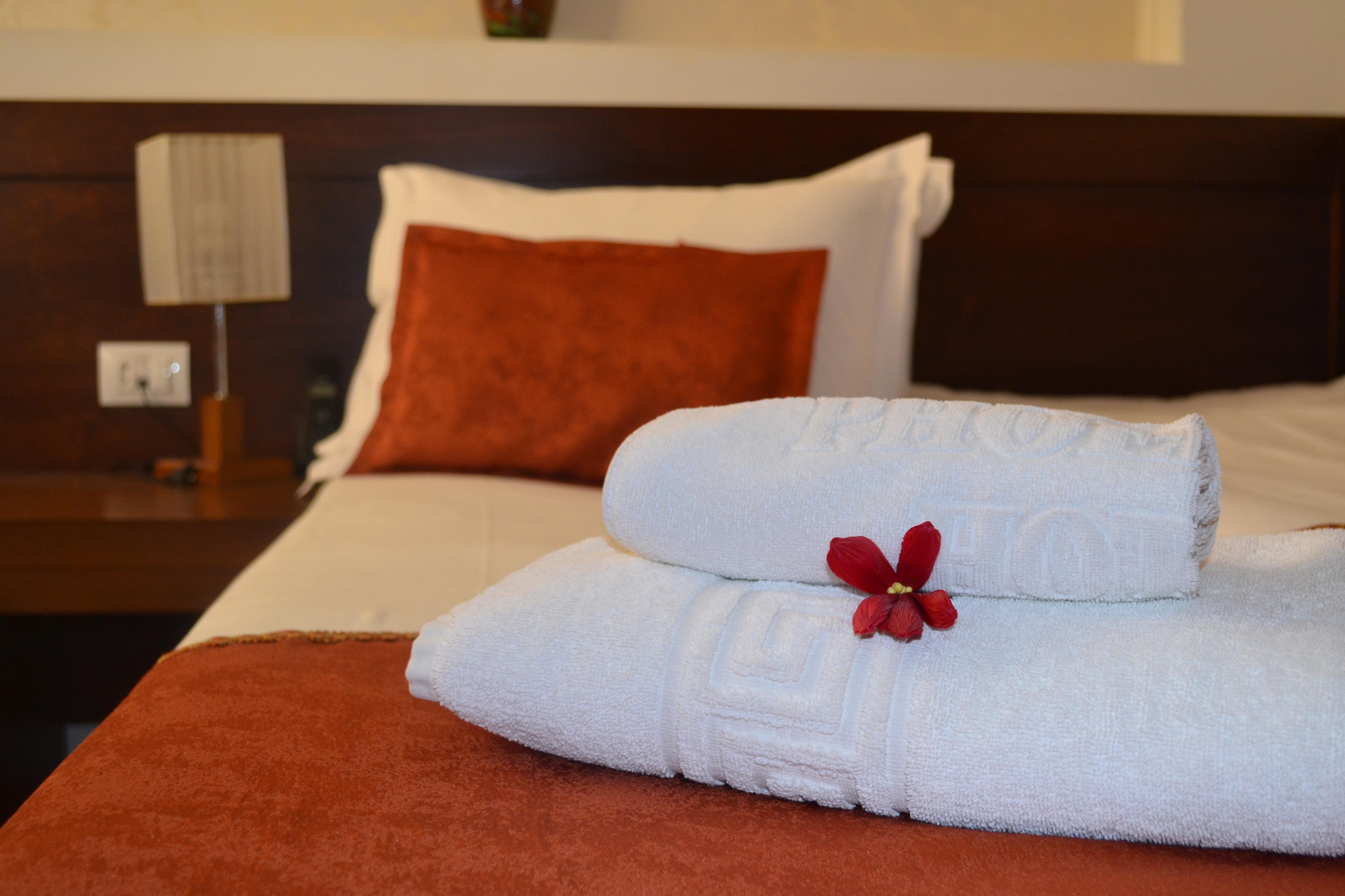 Phoenicia Comfort