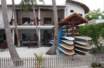 Cokes Surf Camp