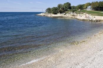 Laguna Albatros